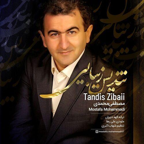 دانلود آهنگ جدید مصطفی محمدی تندیس زیبایی