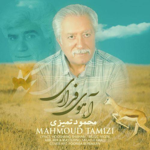 دانلود آهنگ جدید محمود تمیزی آهوی فراری